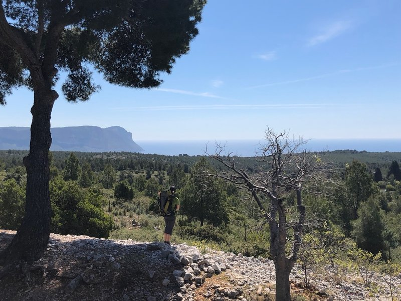 Up high on the way to Calanque d'En Vau