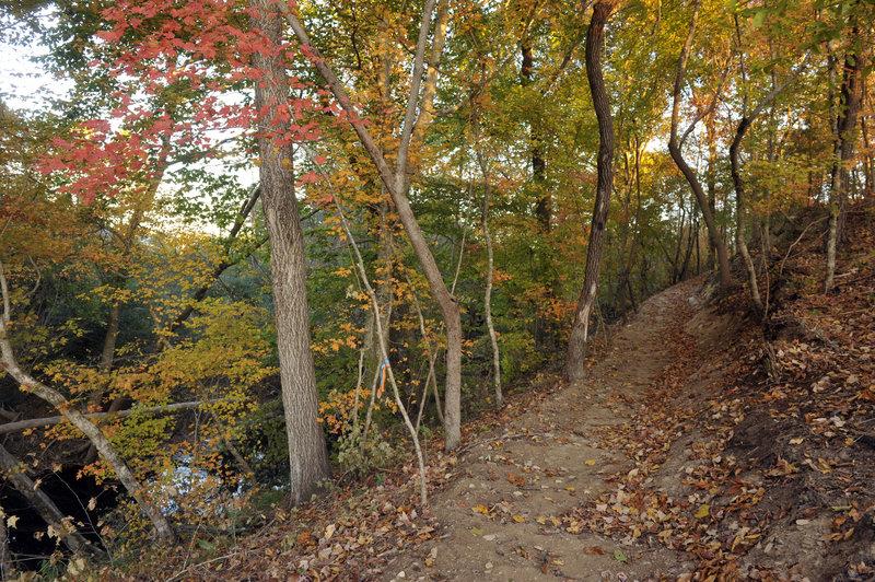 Twelve Mile Creek Trail