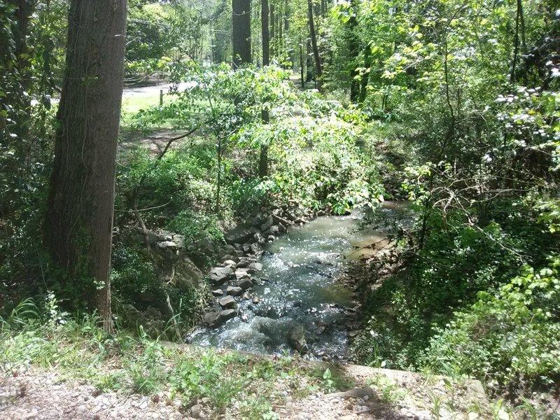 Southwest prong Beaver Dam Creek.