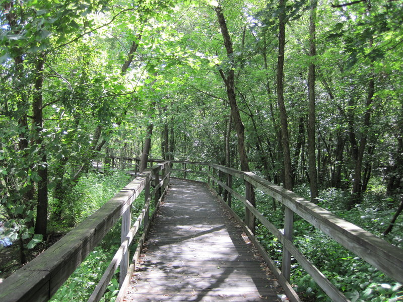 Hickory Greenway boardwalk