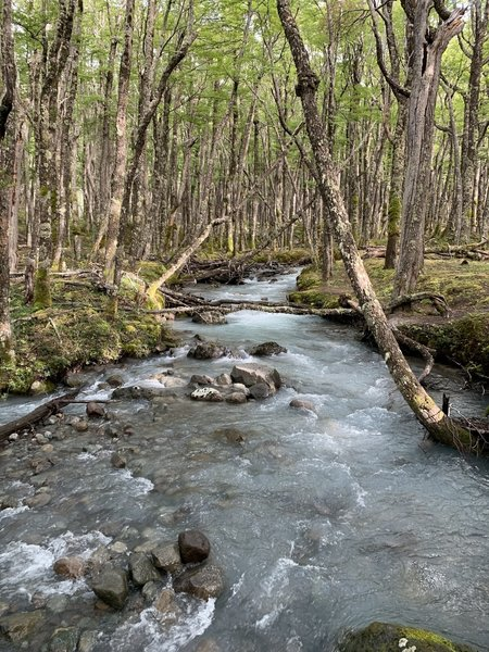 LOUD glacier-fed brook. A great soundtrack to the trail.