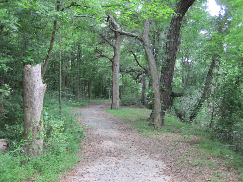 Ramsour's Mill Trail