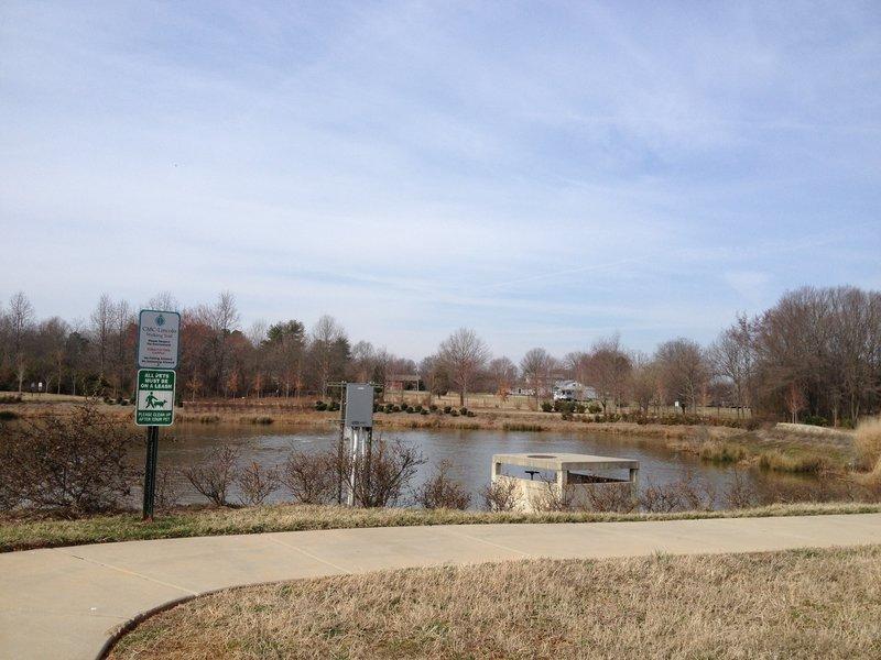 Carolinas Medical Center Trail (Lincoln) Pond