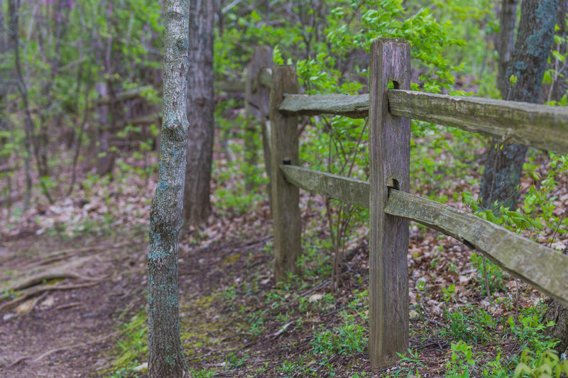a fence along the highest elevation of the trail