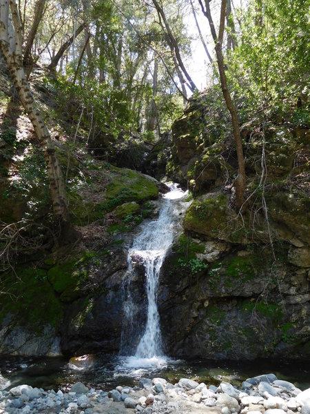 Waterfall along West Fork.