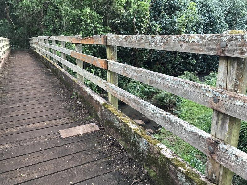 'Opaeka'a Stream foot bridge