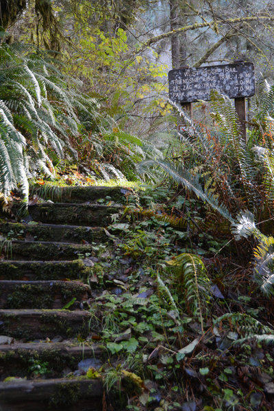 Stairs tempt you up the west ridge trail