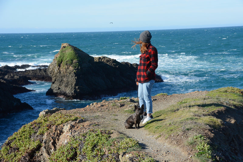 A perfect winter day at Mendocino
