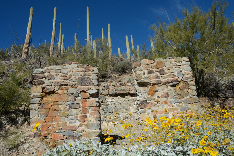 Remains of a structure at Gould Mine