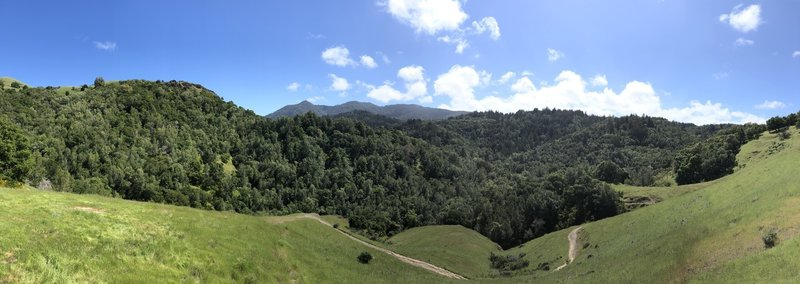 View across the valley toward Mt. Tam from Hidden Meadow Trail