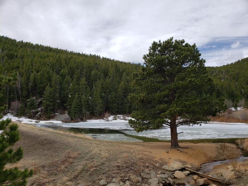 Mountain Lake along side Mountain Lion Trail.
