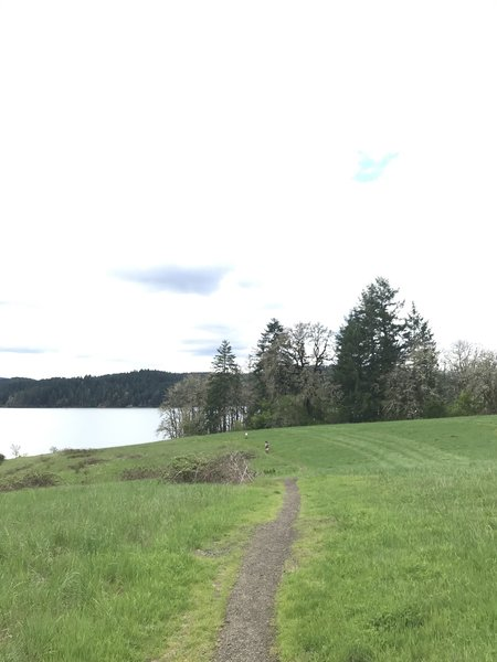 A few open fields that will give you awesome views of the lake.