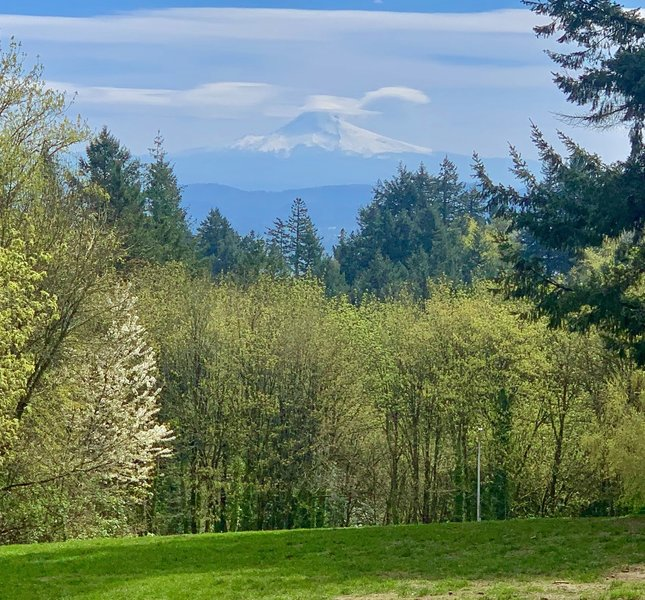 Mount Hood from Council Crest
