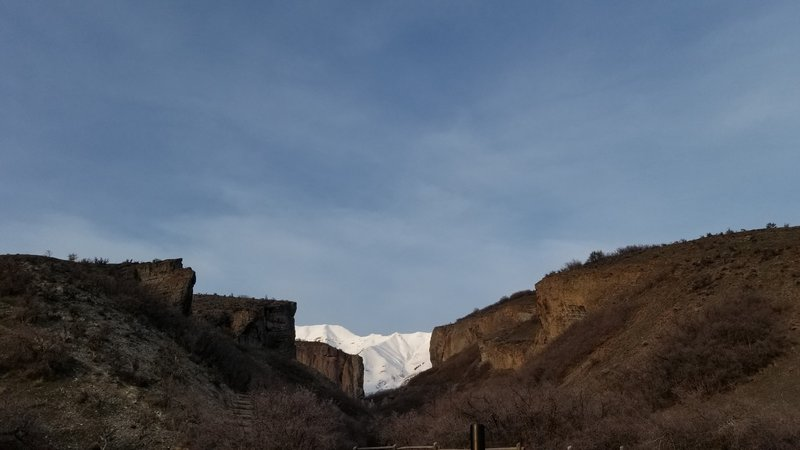 Picture taken in early spring on March 25