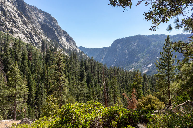 Looking back into Woods Creek Canyon