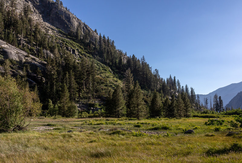 Castle Domes Meadow