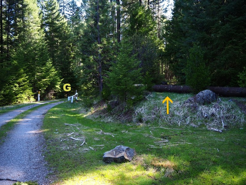 The Dunlop Trailhead (arrow) is just before an open gate (G) on Forest Road 2500-100