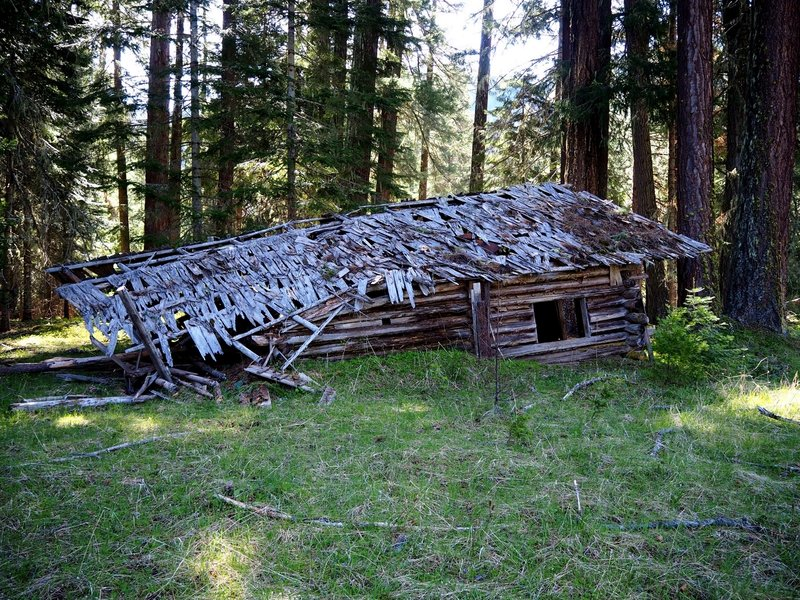 The shed and food cooler is the only building still standing at the Dunlop Ranch.