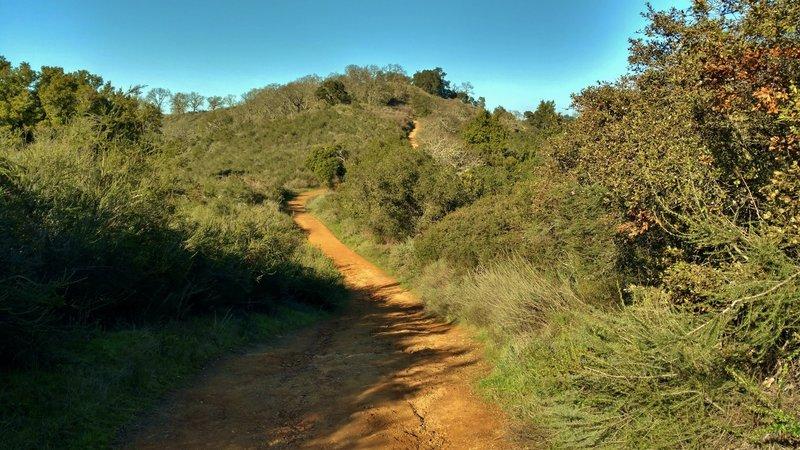 Capehorn Pass Trail climbs steeply to meet Hacienda Trail.