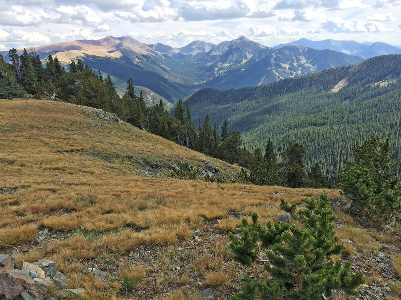 Where the trail climbs out of the canyon, this is the view looking east toward Wheeler Peak and the ski resort.