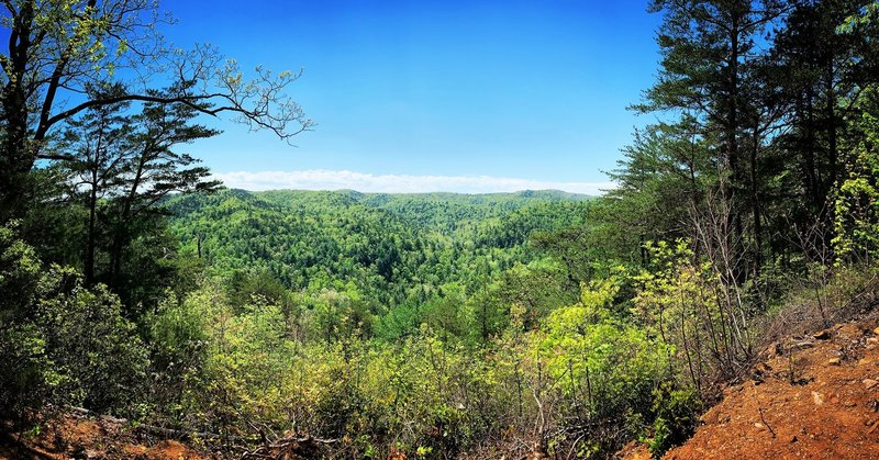 Panoramic View on the Upper Falls Trail.