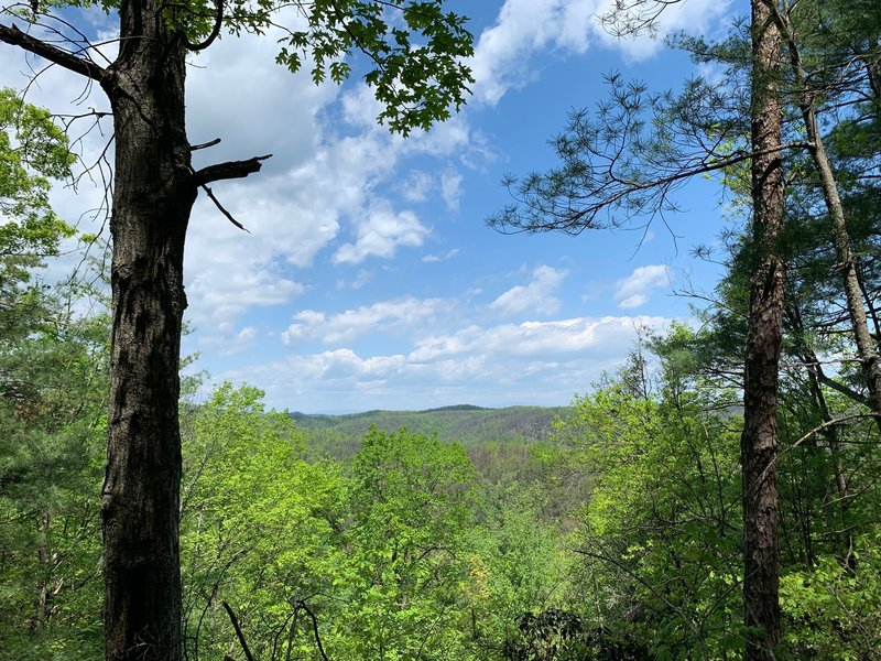Lookout just North of the HQ trail intersection