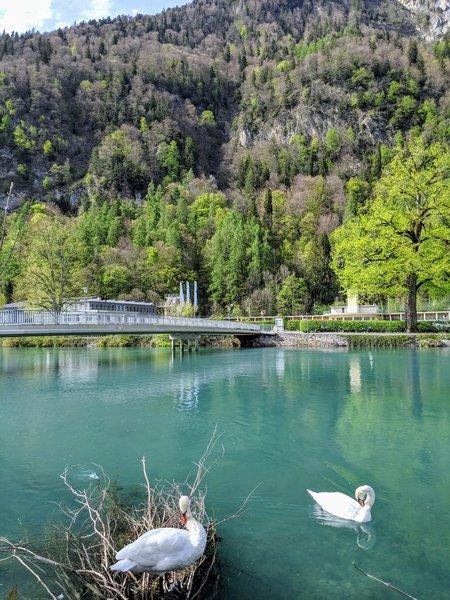 River-walk in Interlaken