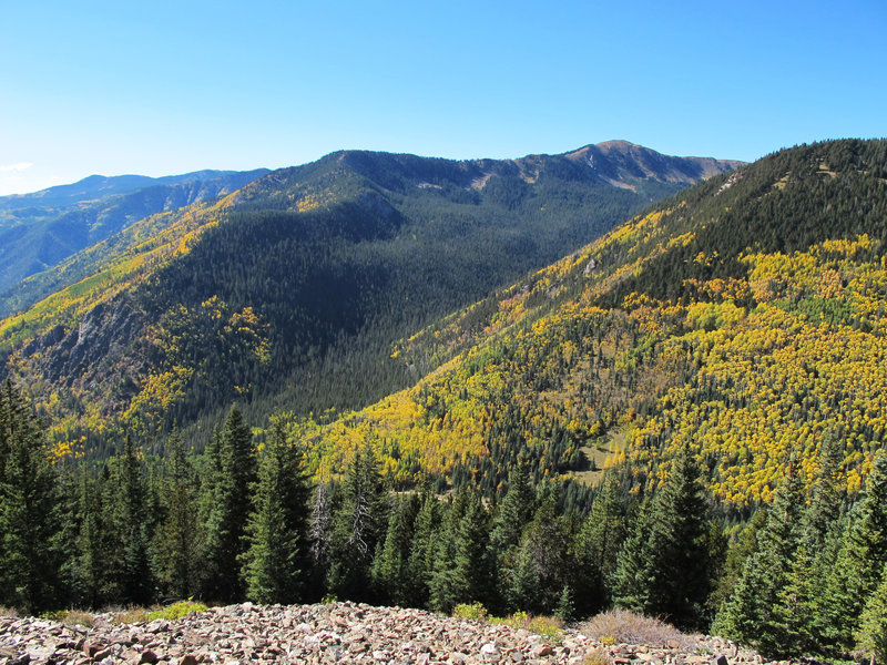View looking up Long Canyon from the Wheeler Peak Trail/Bull of the Woods Trail.
