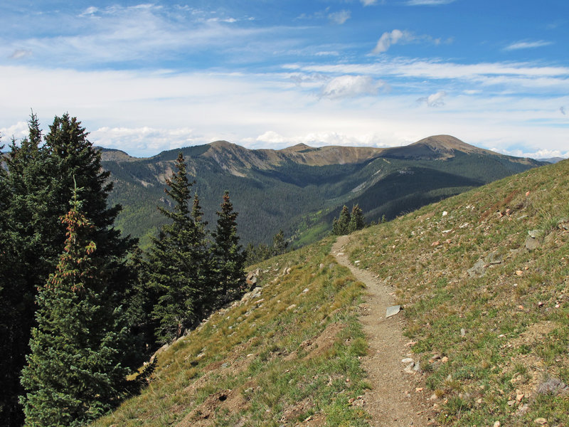 Great views of Gold Hill and Long Canyon from the Wheeler Peak Trail.
