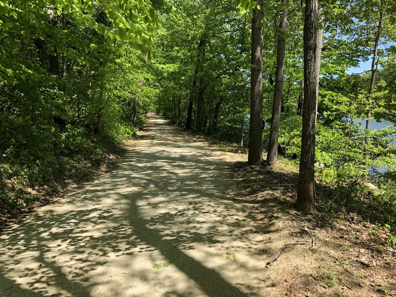 The trail surface is hard packed dirt and light gravel. Even after heavy rain the day before it was dry and runnable.