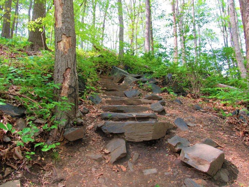 Stone steps along Union Dam Trail.