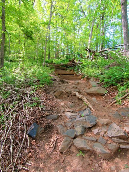 Stairs and rocky descent along Union Dam Trail