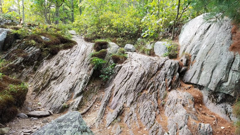 Interesting Silurian and Devonian sedimentary rock formations