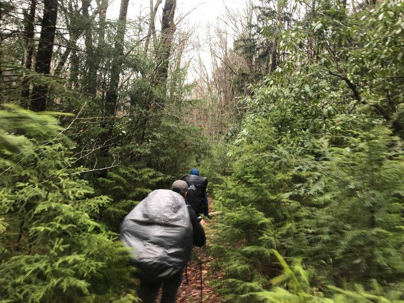 Buddies hiking the Big Beechy