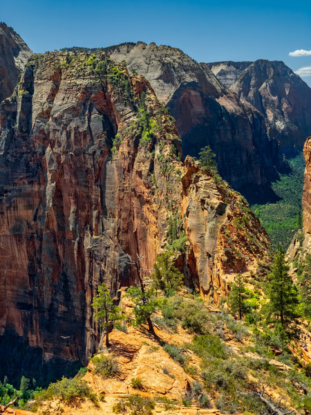 Angels Landing from West Rim Trail