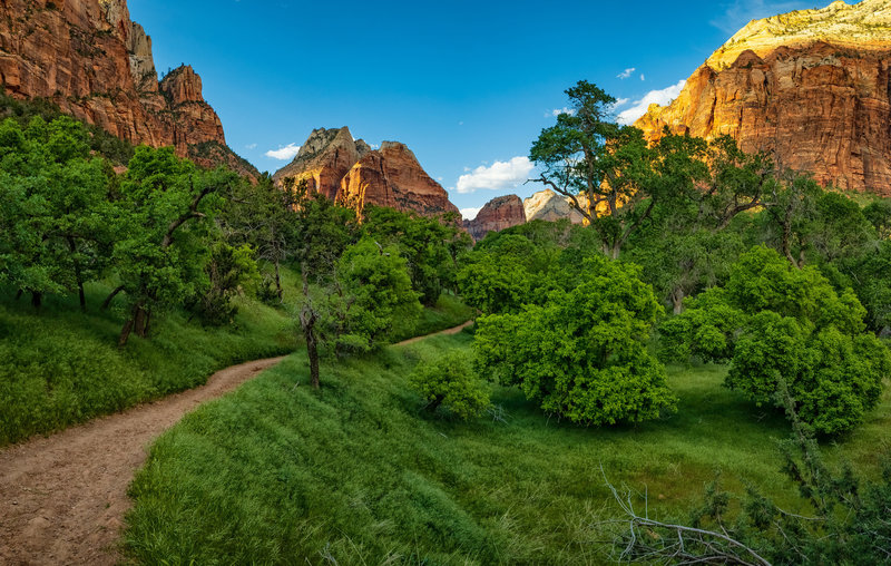 Sand Bench Trail (Mt. Zion/The Spearhead, Angels Landing in the distance)