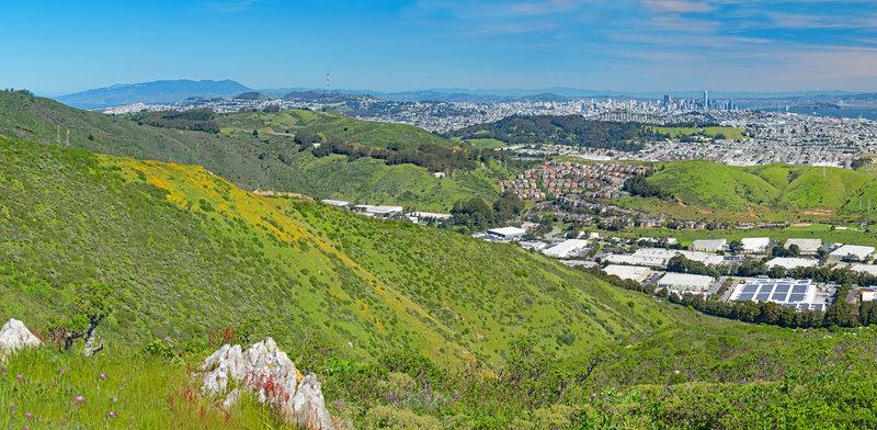 Goldfields and San Francisco Skyline