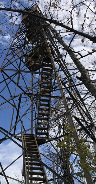 Shuckstack Fire Tower...a few more steps.  Spectacular view.