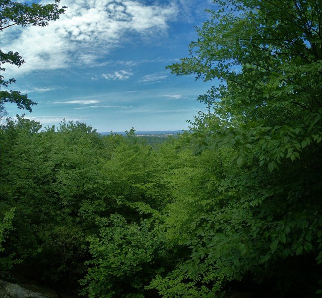 View from Eagle Rock in May