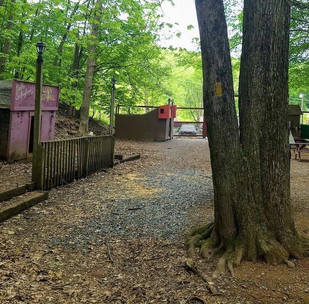 Pretzel Hut petting zoo exit/entrance; note the gold blaze