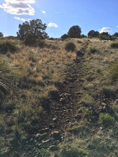 Chunky trail headed back up