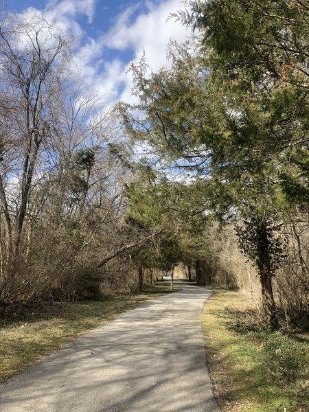 Trail near the park