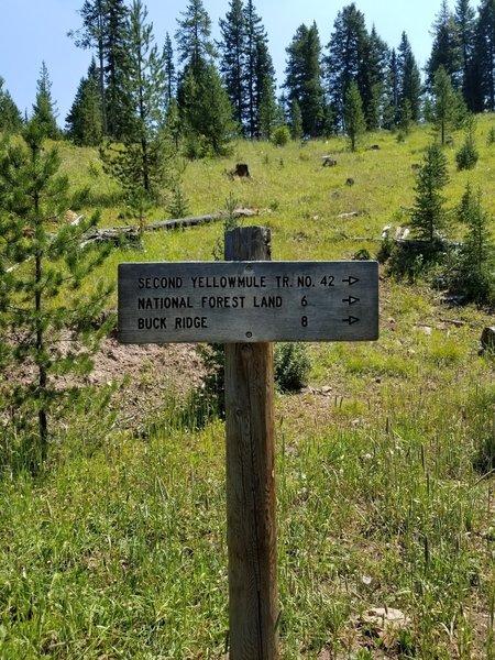 Trail junctions below the ridge trail