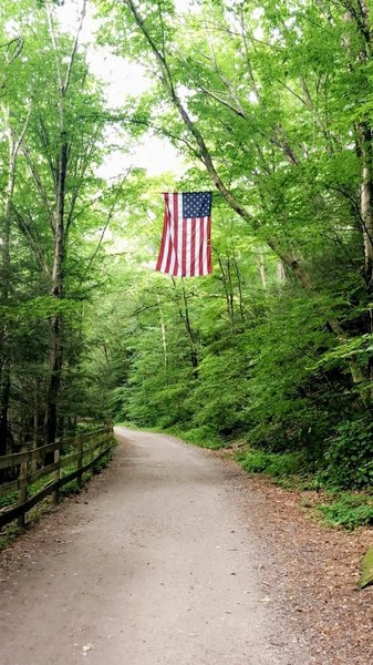 American flag over the trail