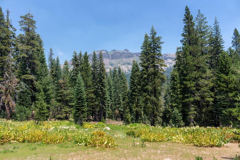 Castle Peak across the open meadows surrounding Castle Valley Road.