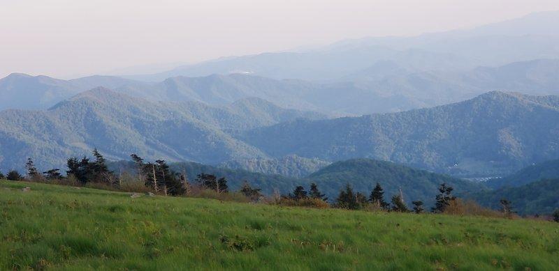 Heading towards Grassy Ridge Bald.