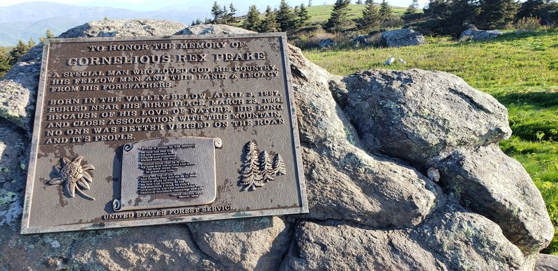 Cornelious Rex Peake Memorial a top Grassy Ridge Bald