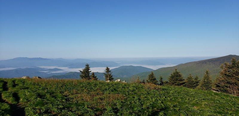 Saturday Morning View of Grassy Ridge Bald