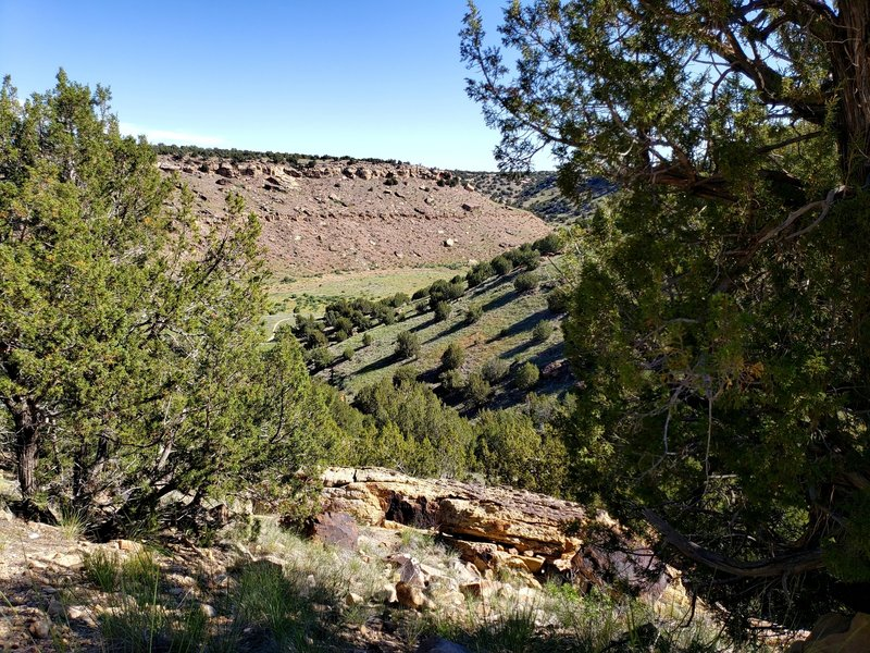 View into Withers Canyon