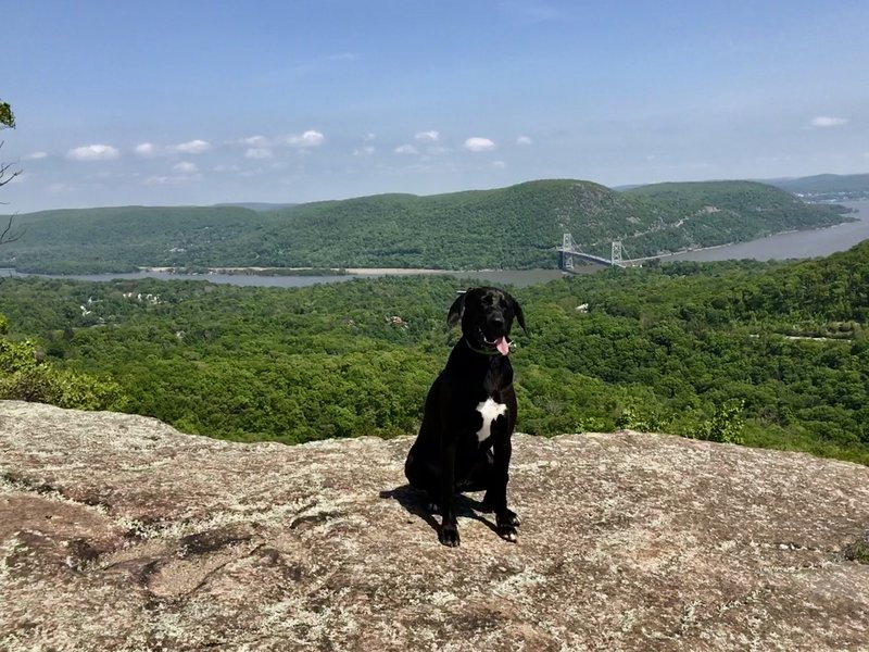 View of the Hudson and Bear Mountain Bridge.